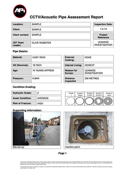 inspection reports template